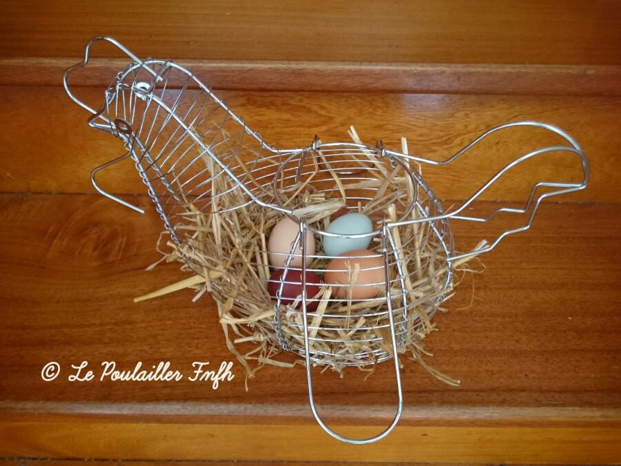 Nos poules et leurs œufs aux milles couleurs !!